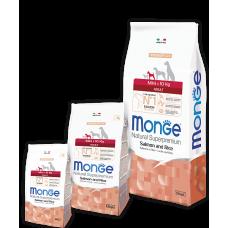 Monge Mini Adult Salmon для взрослых собак мелких пород с лососем 800г