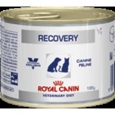 Royal Canin RECOVERY для собак и кошек в период выздоровления 195г