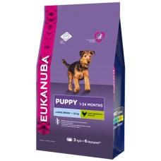 Eukanuba Dog Puppy large breed для щенков крупных пород 3кг