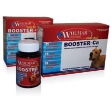 Wolmar BOOSTER Ca - мультикомплекс для собак средних и крупных пород (380таб)